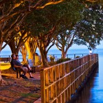 bench and fishing at night